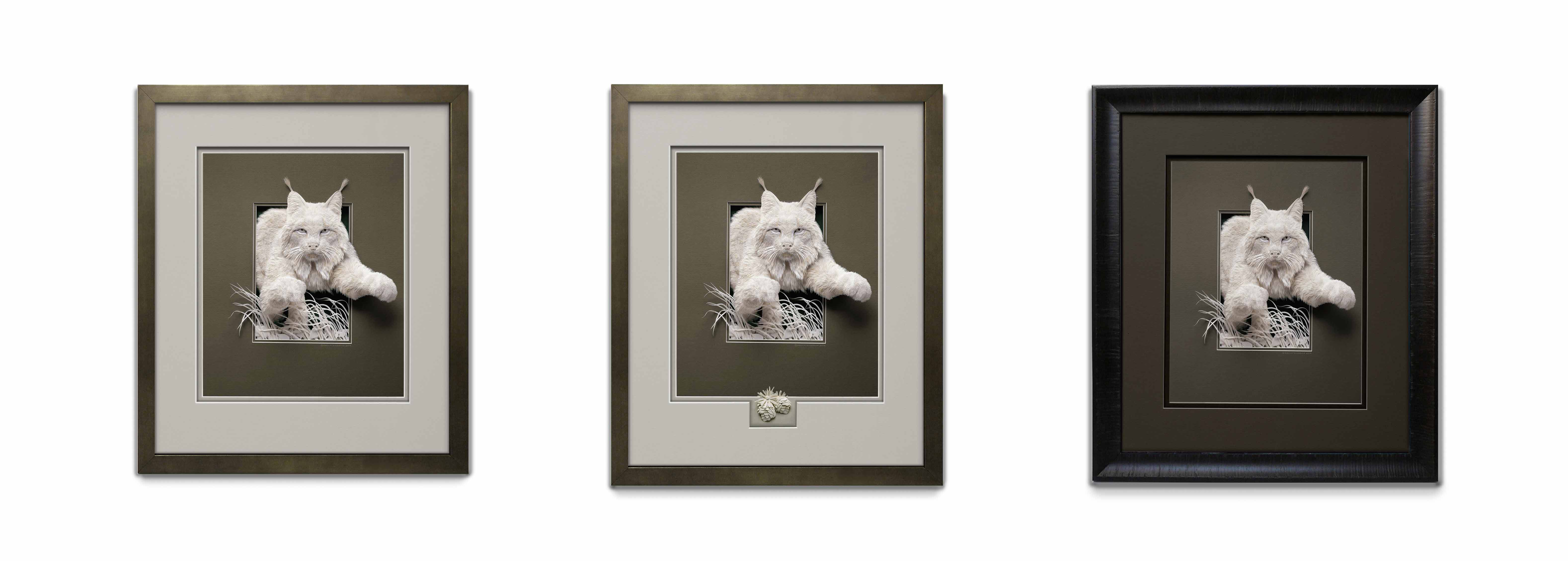 Calvin-Nicholls-framed-prints-on-white