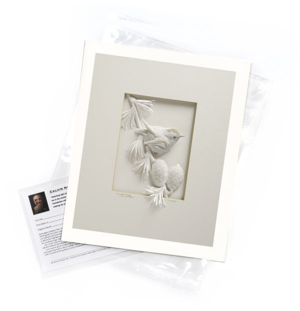 Calvin-Nicholls-print-Goldcrest