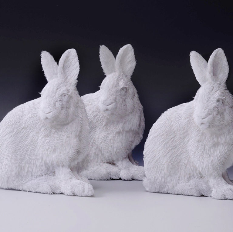 Calvin-Nicholls-DY-Bunnies
