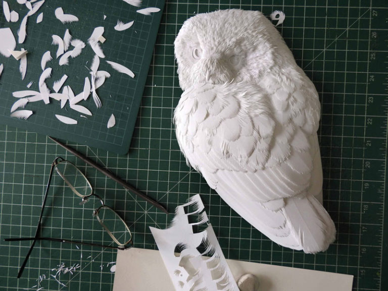 Calvin-Nicholls-DY-owl