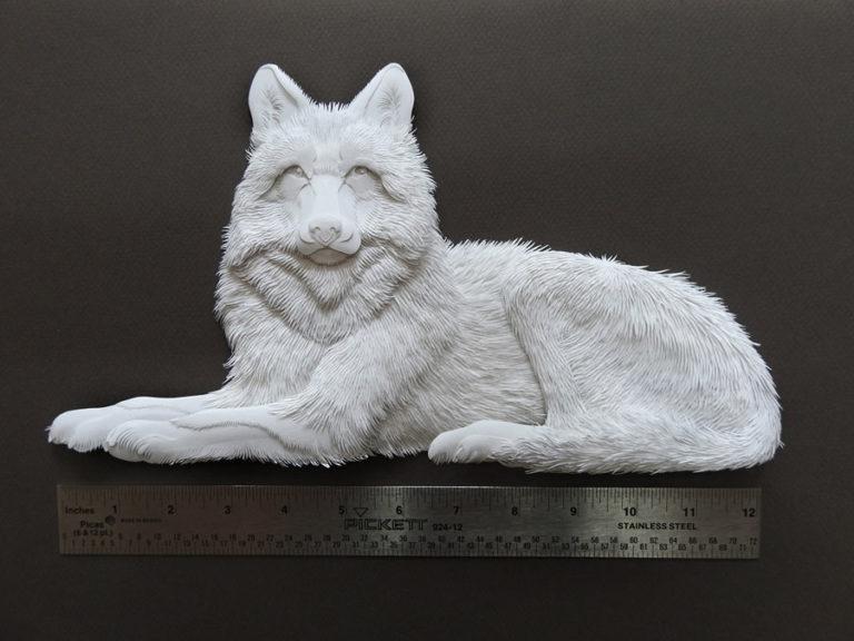 Calvin-Nicholls-DY-wolf