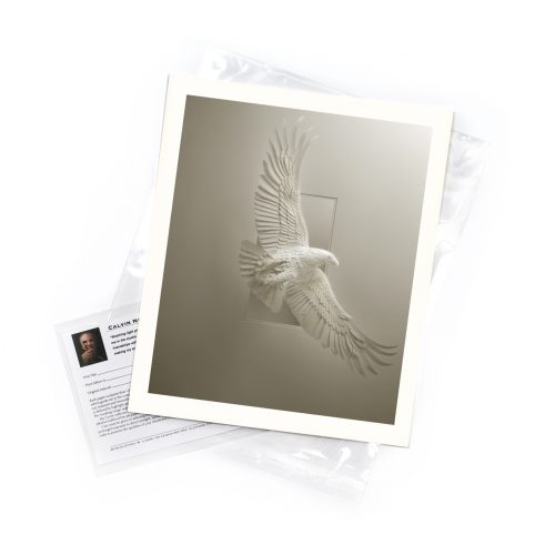Eagle Soaring – Limited Edition Art Print