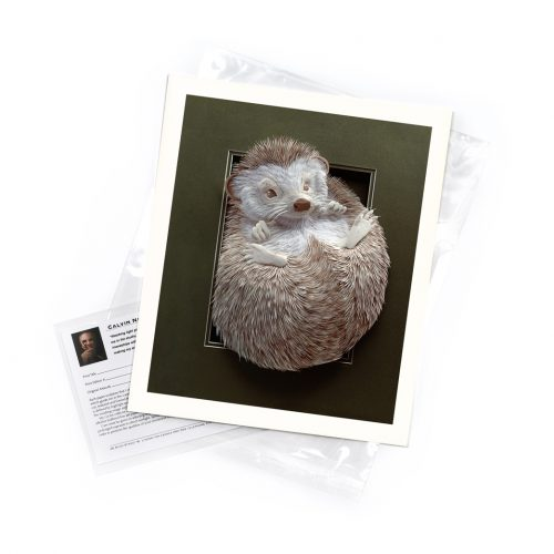 Hedgehog – Limited Edition Art Print