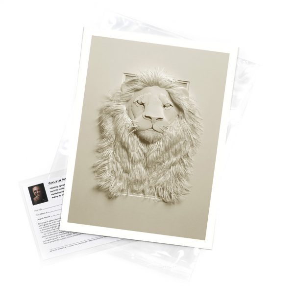 Calvin-Nicholls-print-Lion
