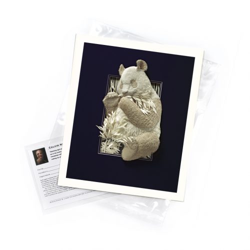 Panda – Limited Edition Art Print
