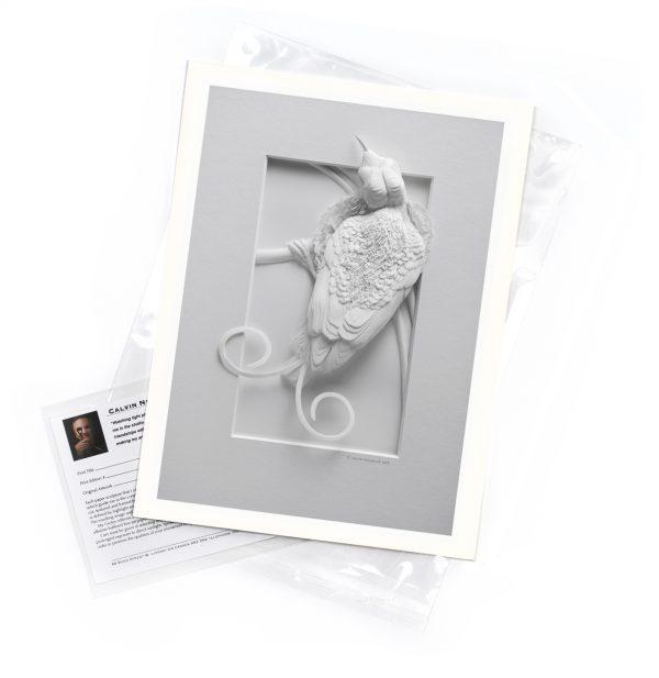 Calvin-Nicholls-print-Wilson's