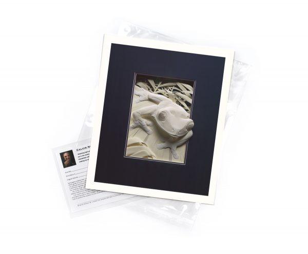 Calvin Nicholls Paper Sculpture Art Flat Print Frog