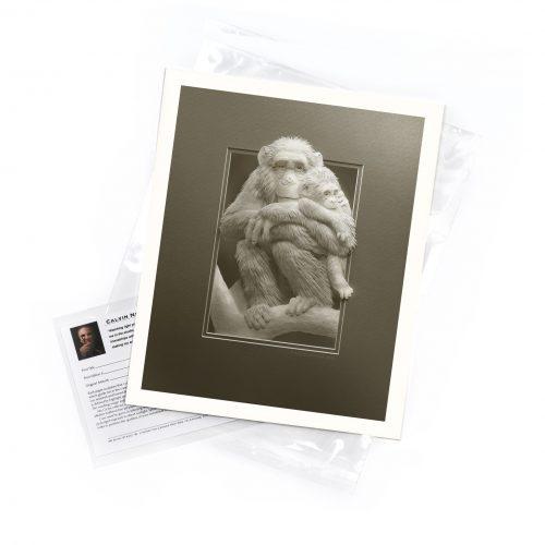 Little Chimp – Limited Edition Art Print